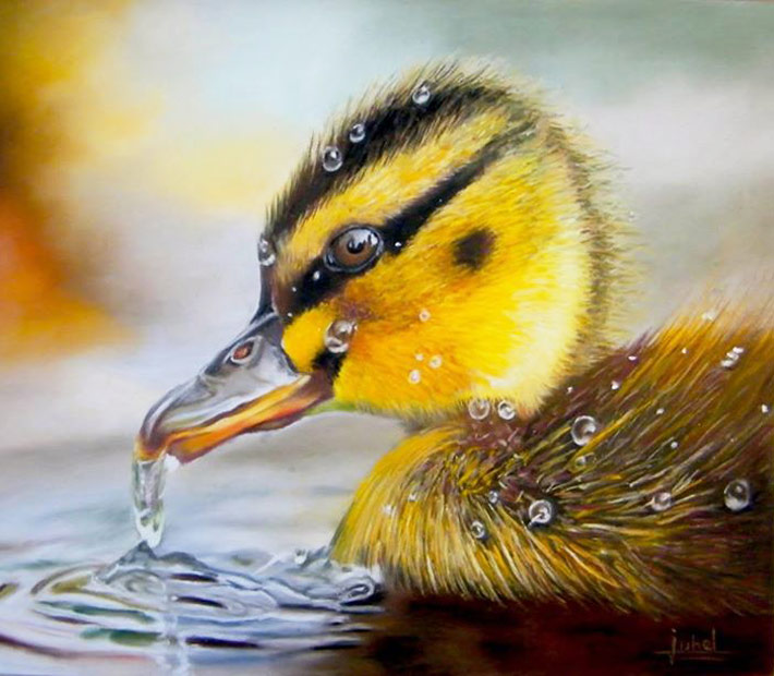 Duck drawing by Béatrice Juhel