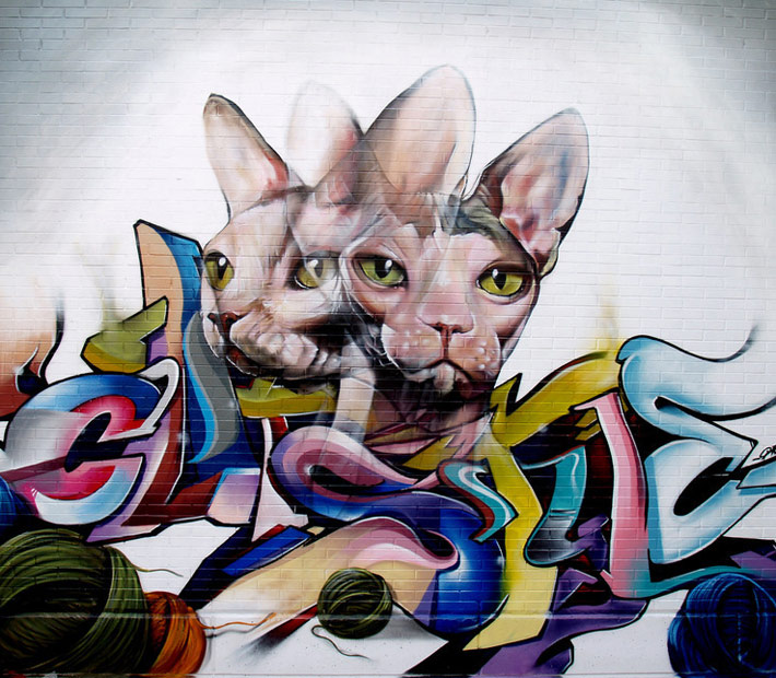 Cats by Pichi Avo